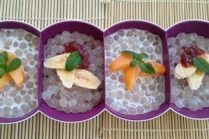 פניני טפיוקה גדולות עם קרם קוקוס ופירות